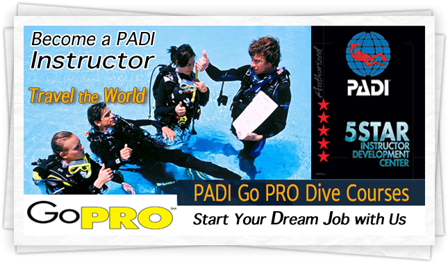 idc padi gopro instructor